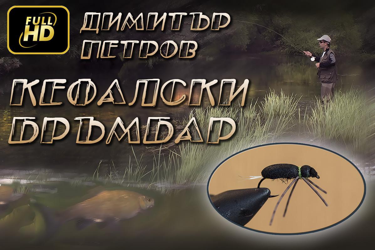 Кефалски бръмбар