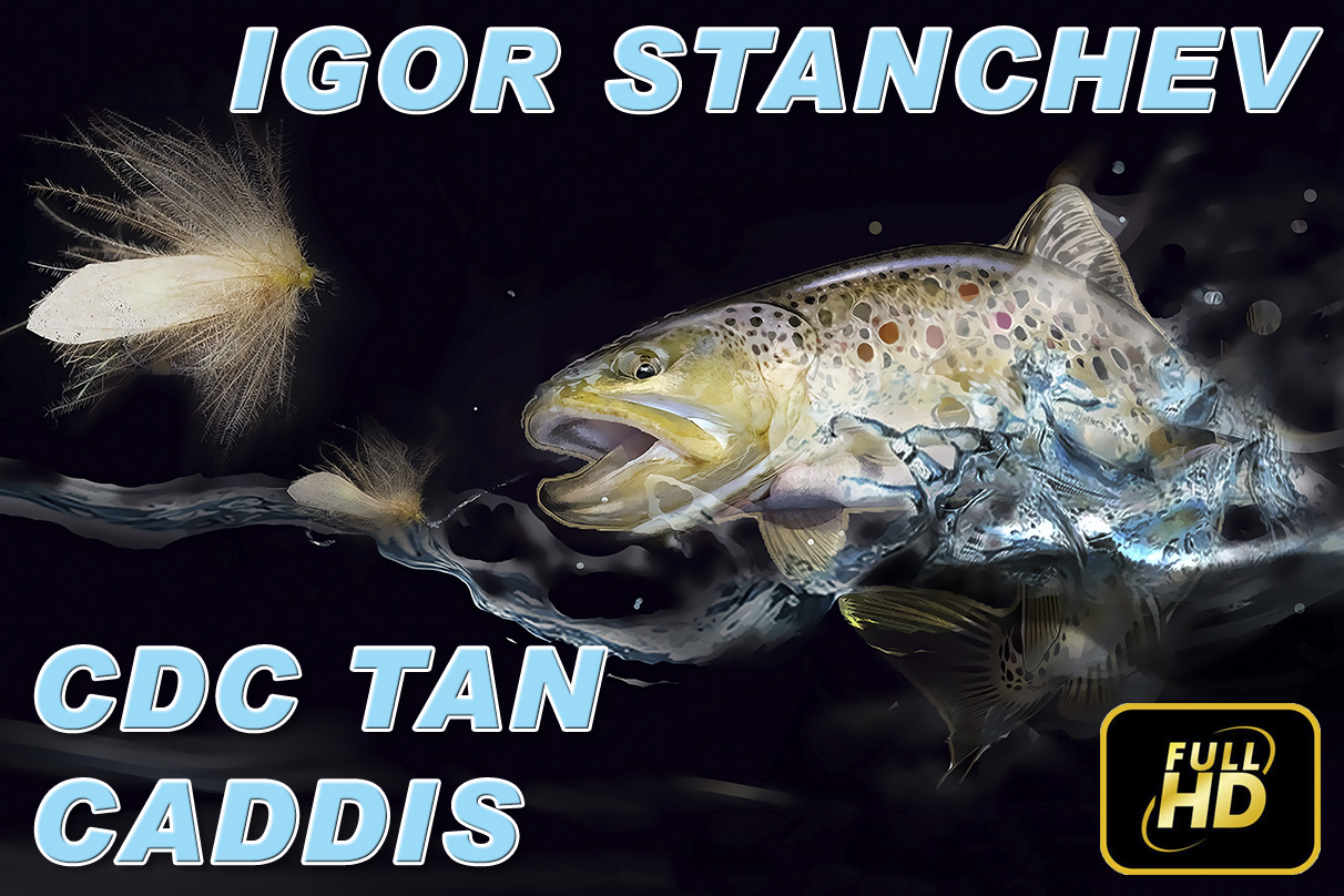 CDC Tan Caddis - Игор Станчев