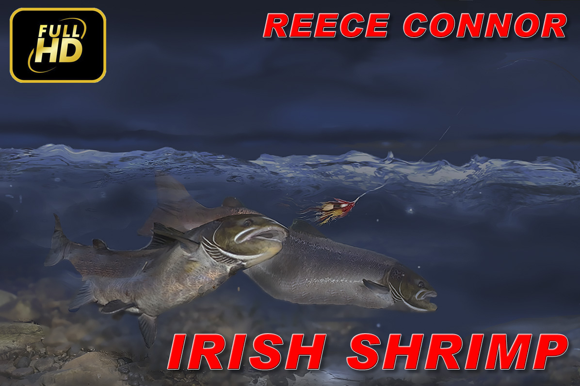 Irish Shrimp (Salmon Fly) - Reece Connor