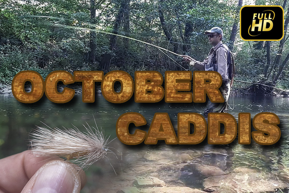 http://flyfishing.iantra.com/fly-fishing/tips-and-tricks/642-october-caddis