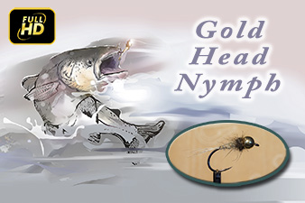 Gold Head Nymph